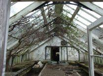 Greenhouse 2 - April 2012 - TC