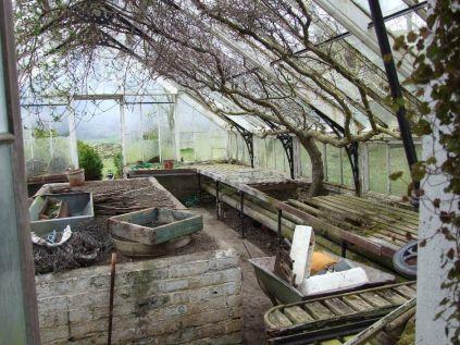 Greenhouse 5 - April 2012 - TC