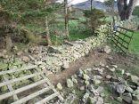 Dry Stone Wall 7 - 27052012 - TC