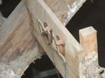 Dry rot in MBR roof - 06102012 - TC