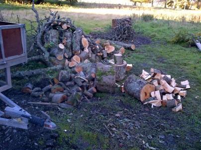 Logging -20121021