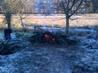 Yew Avenue - Bonfire 2 - 20121202
