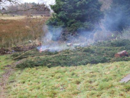 Another bonfire
