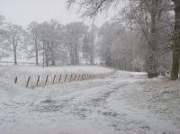 Snowtime - Drive - 13012013