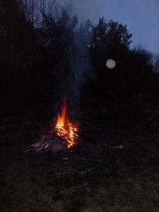 Bonfire 2 - 09022013