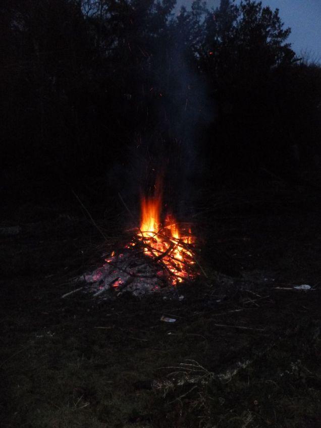 Bonfire 3 - 09022013