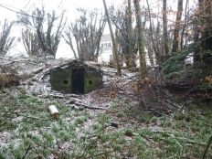 Snowdrops and ice house - 16032013