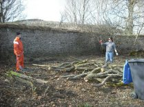 SWG - Wood Pile - 30032013 - DH