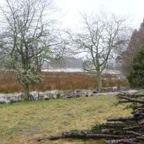 Flooding 4 - 14042013