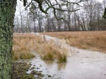 Flooding 7 - 14042013