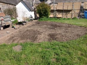 Back lawn - flattened area 2 - 020613