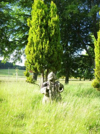 Dwarf in the grass 2 - 21062013