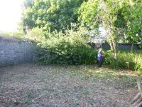 Paul tackling the nettles - 07072013