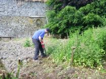 SWG - clearing nettles PH - 06072013