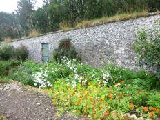 Herb border - 13092013