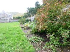 Herb border 2 - 13092013