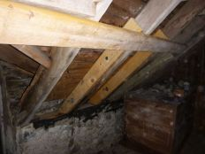 Stable roof - internal - 08092013