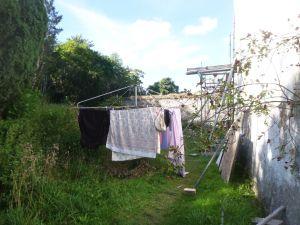 Washing time - 29092013
