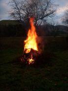 Bonfire - 24112013