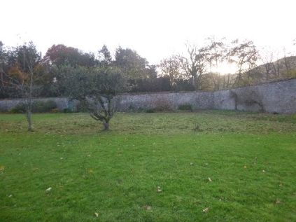 Strimmed lawn - 14112013