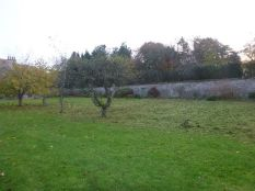Strimmed lawn 2 - 14112013