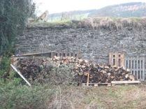 Wood pile 1 - 24112013