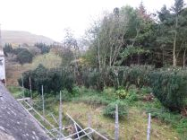 Yew Avenue from scaffold - 02112013