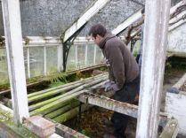 Greenhouse demolition 26 - 14122013