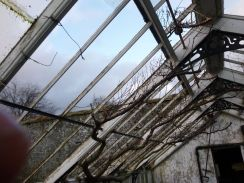 Greenhouse demolition 3 - 13122013