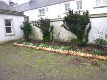 Rose garden 1 - 23022014