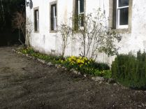 Front flowerbed 2 - 23032014