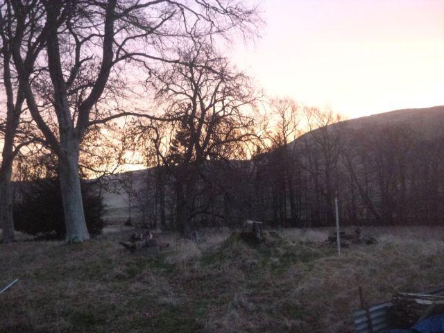 Sunrise 2 - 05032014