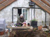 Glasshouse - granny - 13042014