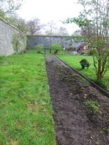 Path edging - back of WG - 26042014