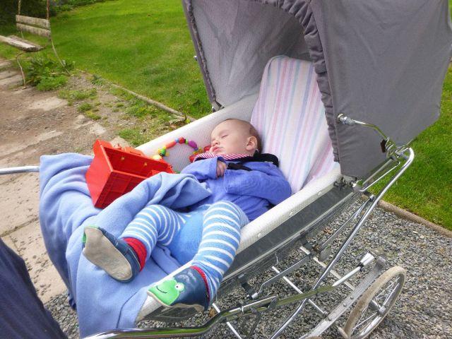 Caleb sleeping - 11052014