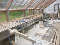 Glasshouse staging - 27052014