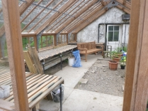 Glasshouse staging - 29052014