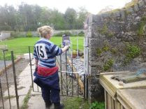 Meg painting gates - 11052014