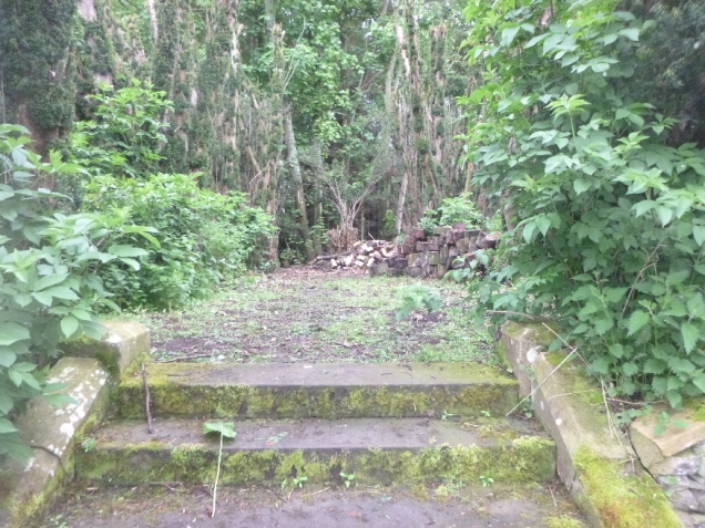 Yew avenue cleared - 29052014