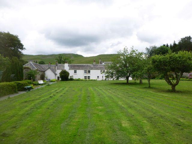 Back lawn - 21062014
