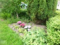 Flower garden - 21062014