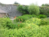 Flower garden 3 - 21062014