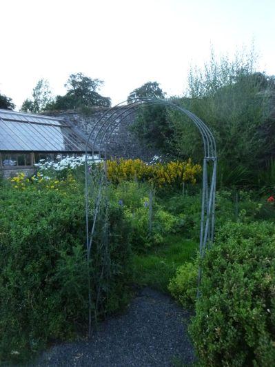 Flower garden 2 - 20072014