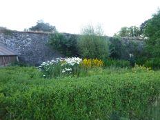 Flower garden - 20072014