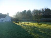 View across garden 3 - 28122014