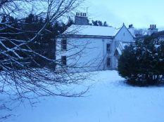 Snow 2 - 30012015 - TC