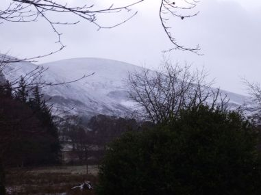 Snow 5 - 14012015 - TC