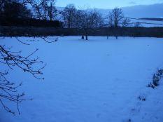 Snow 5 - 30012015 - TC