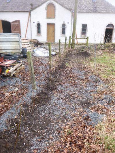 New hedge 1 - 21022015