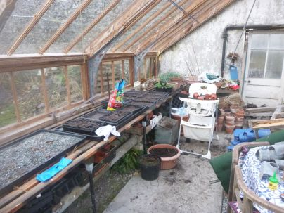 Seed planting in glasshouse - 29032015